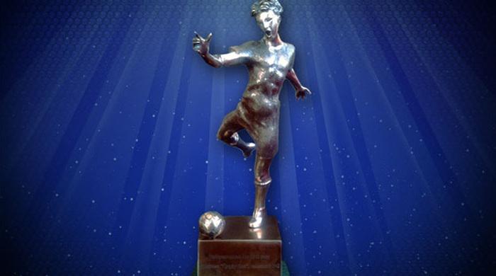 Награда найдет Руслана Ротаня