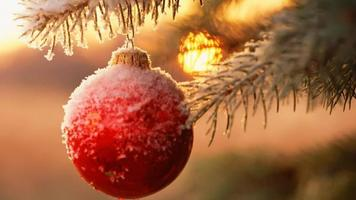 БК Winline дарит бесплатную ставку 10 долларов к Новому году!