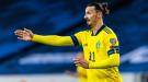 Ибрагимович получил повреждение во время тренировки сборной Швеции