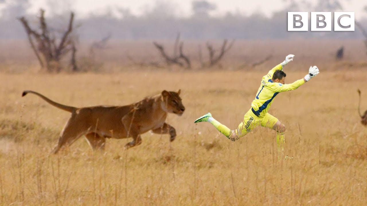 Прыжок вратаря сборной Шотландии Маршалла высмеяли в соцсетях после матча с Чехией (Фото) - изображение 33