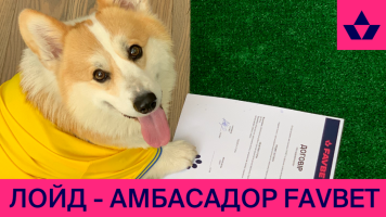 Коргі Лойд спрогнозував перемогу України над Швецією